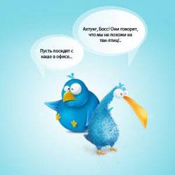 Иконки голубых птиц