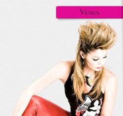 Шаблон для uCoz Venus